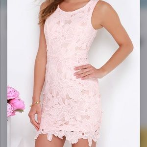 Fluent in Anglaise Peach Lace Dress